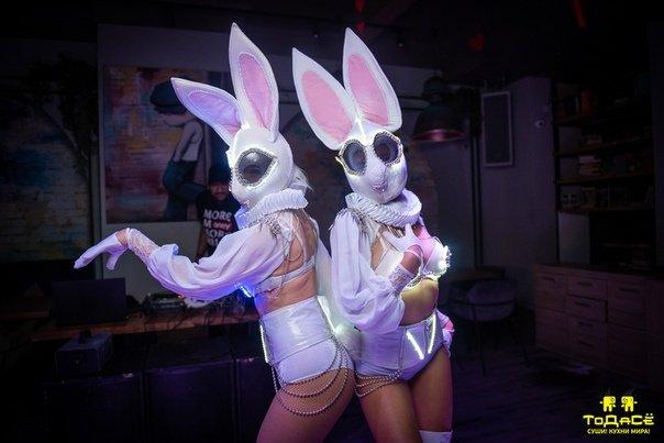 Зайцы в шортах