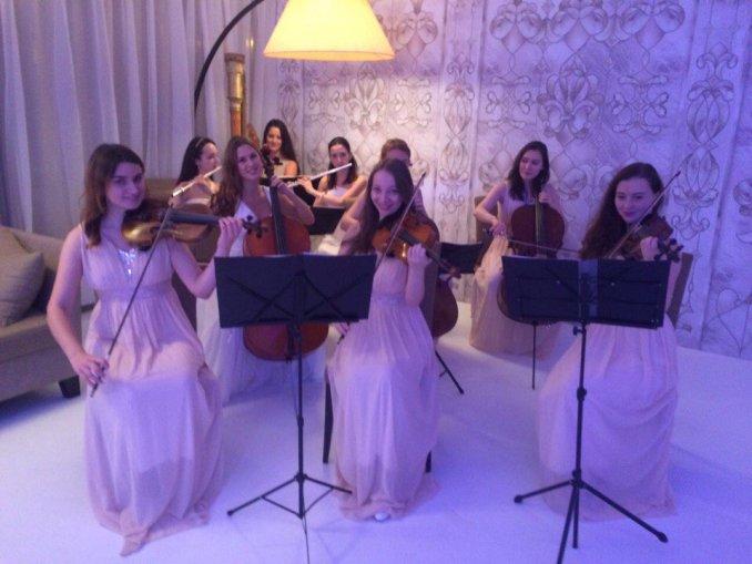 АрФеи-камерный оркестр, струнный квартет,трио